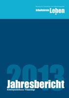 yll-jahresbericht-2013